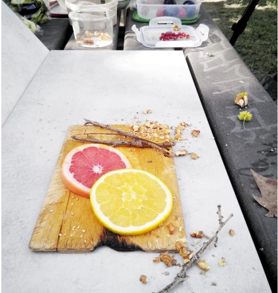 Taller de foto gastronòmica a l'EASD Serra i Abella, pels alumnes de 1 curs del cicle superior de Fotografia. Anna Esplandiu. Montse Abella.
